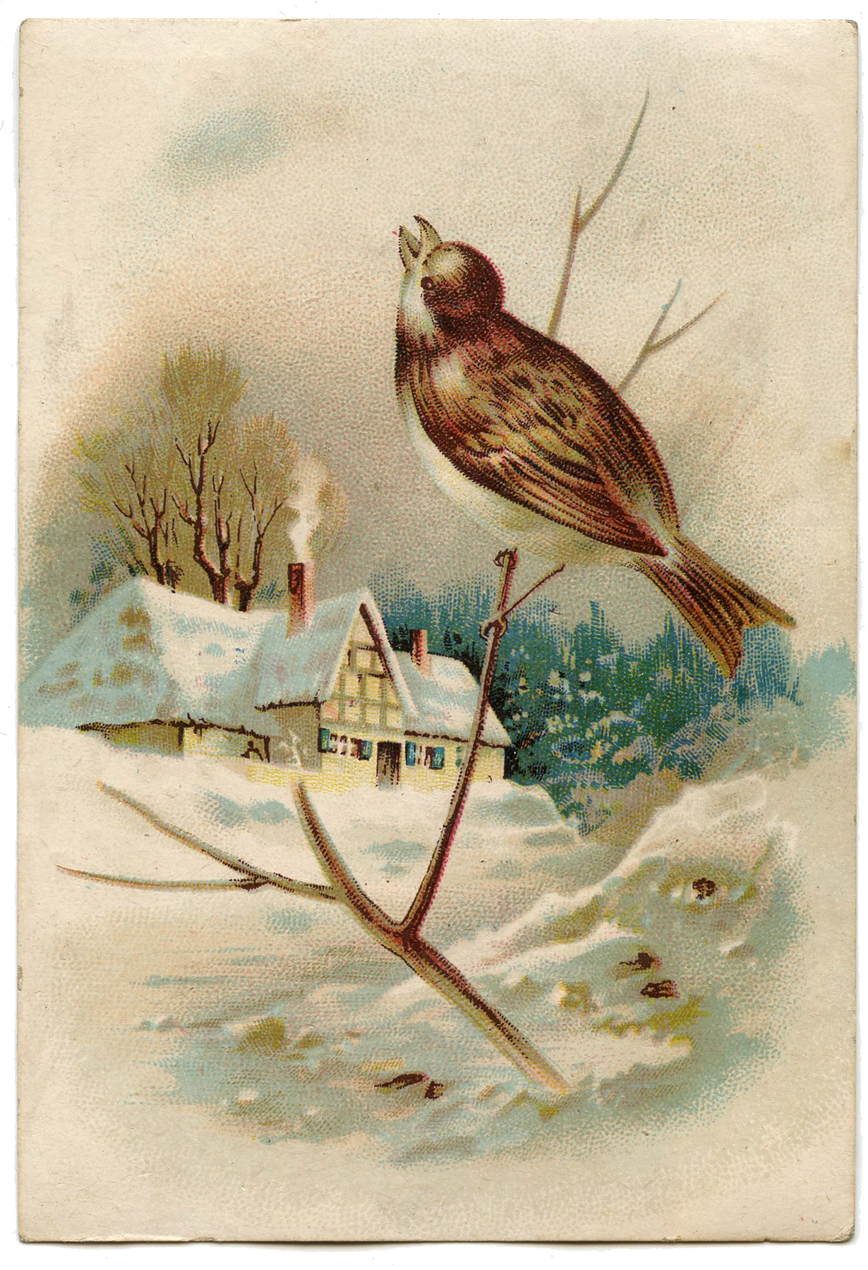 The Graphics Fairy: Winter Cottage Scene Image With Bird!