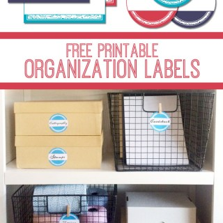 Printable Storage Labels