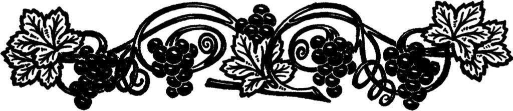 Public Domain Grapevine Image