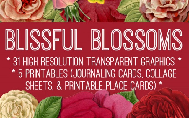 Big Beautiful Blissful Blossoms Kit!! – Graphics Fairy Premium