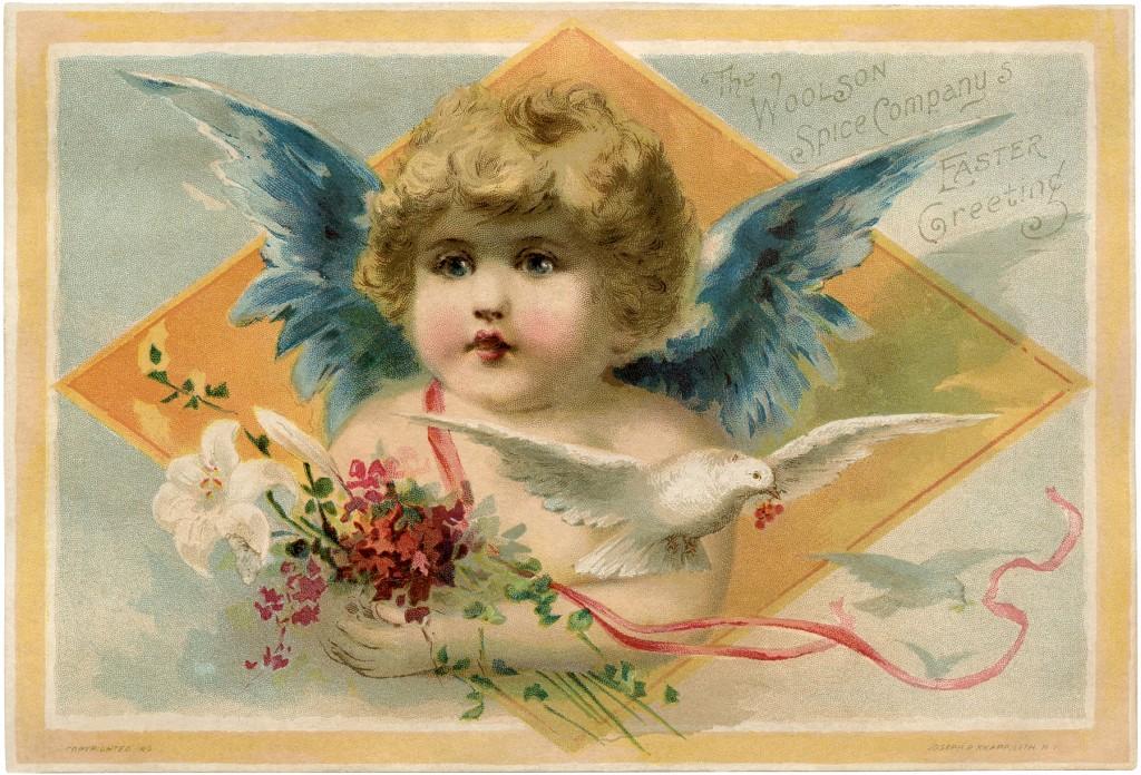 Blue Wings Angel Image