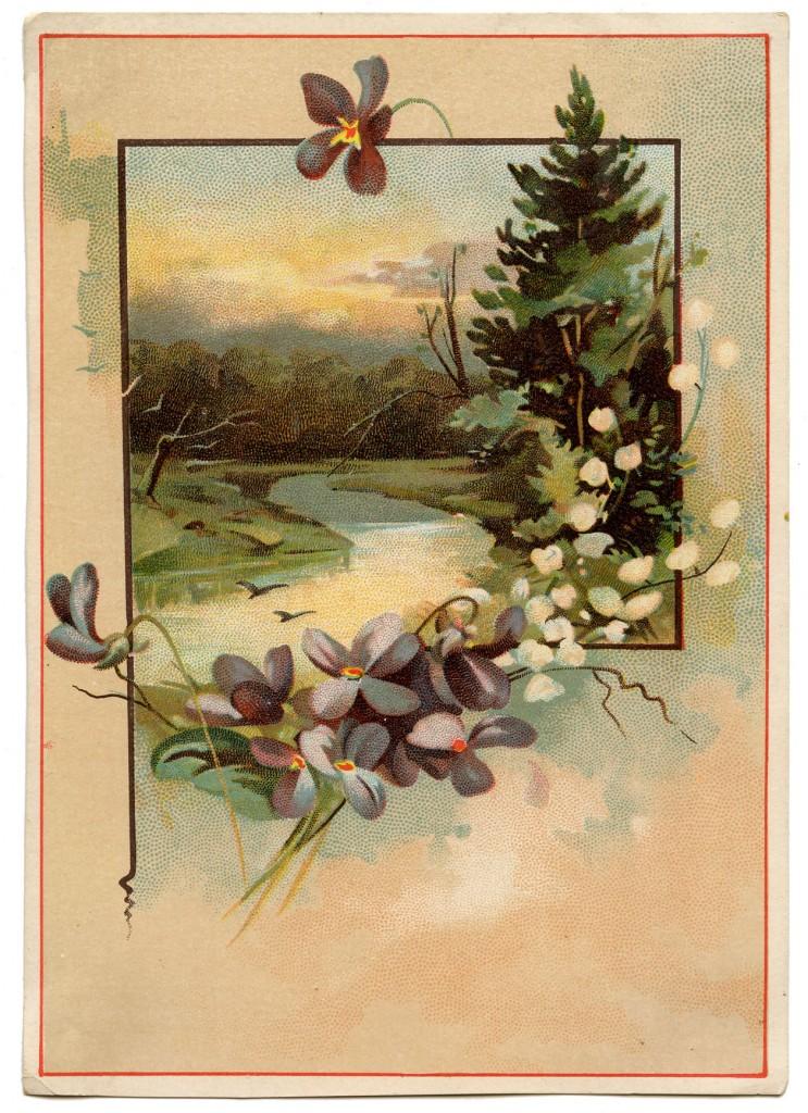 Vintage Violets Landscape
