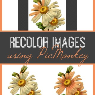 Recolor Images Using PicMonkey!