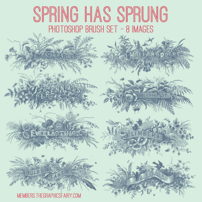 spring_sprung_brushes_graphicsfairy1