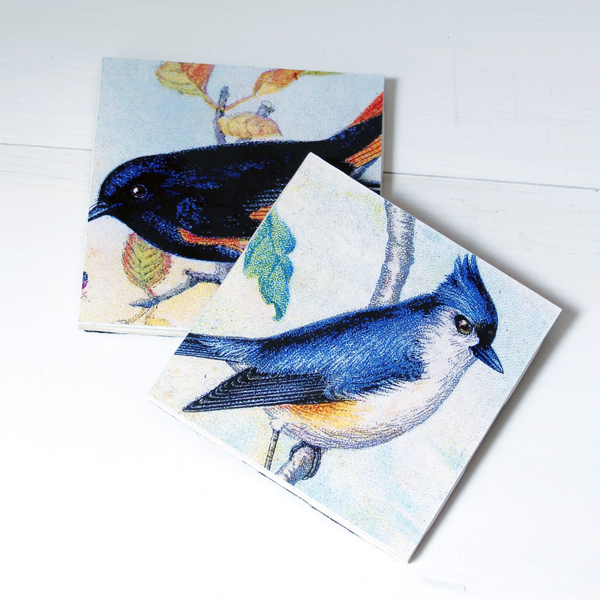 01 - The Cottage Market - Vintage Bird Coasters