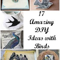 17 Great DIY Ideas with Birds