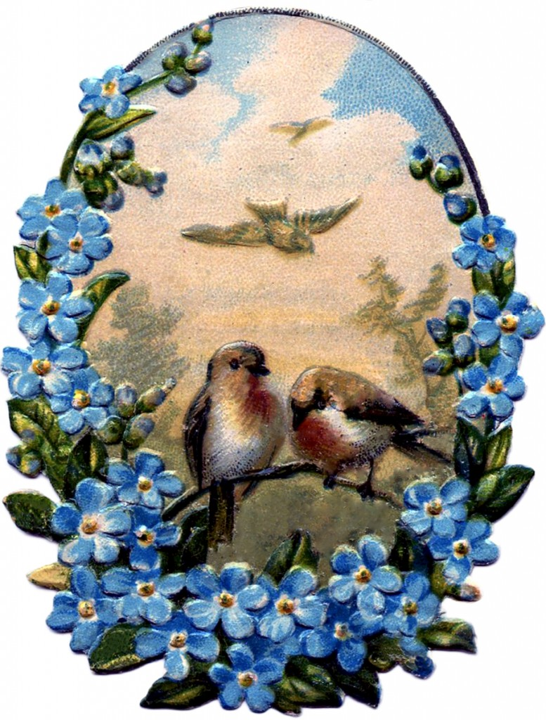 Birds with Forget Me Nots Image
