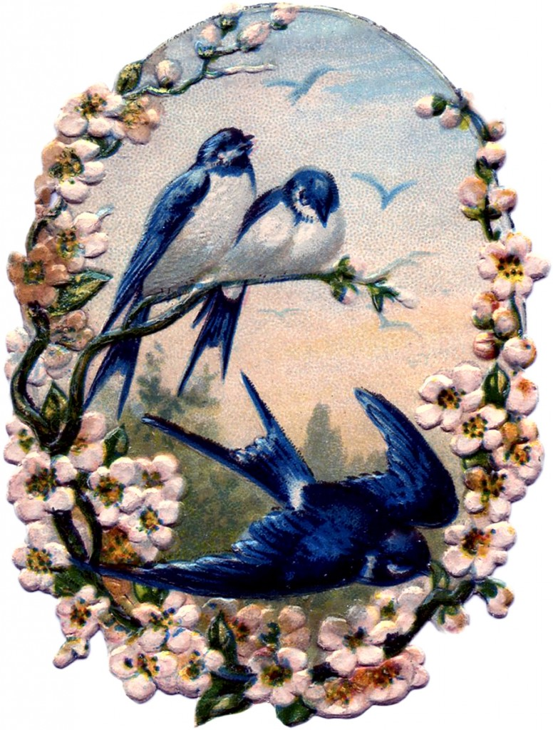 Vintage Birds with Flowers Scrap