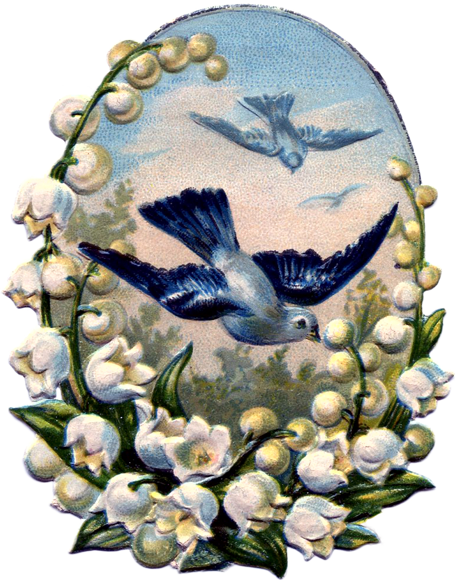 The Graphics Fairy: Vintage Bluebirds Image
