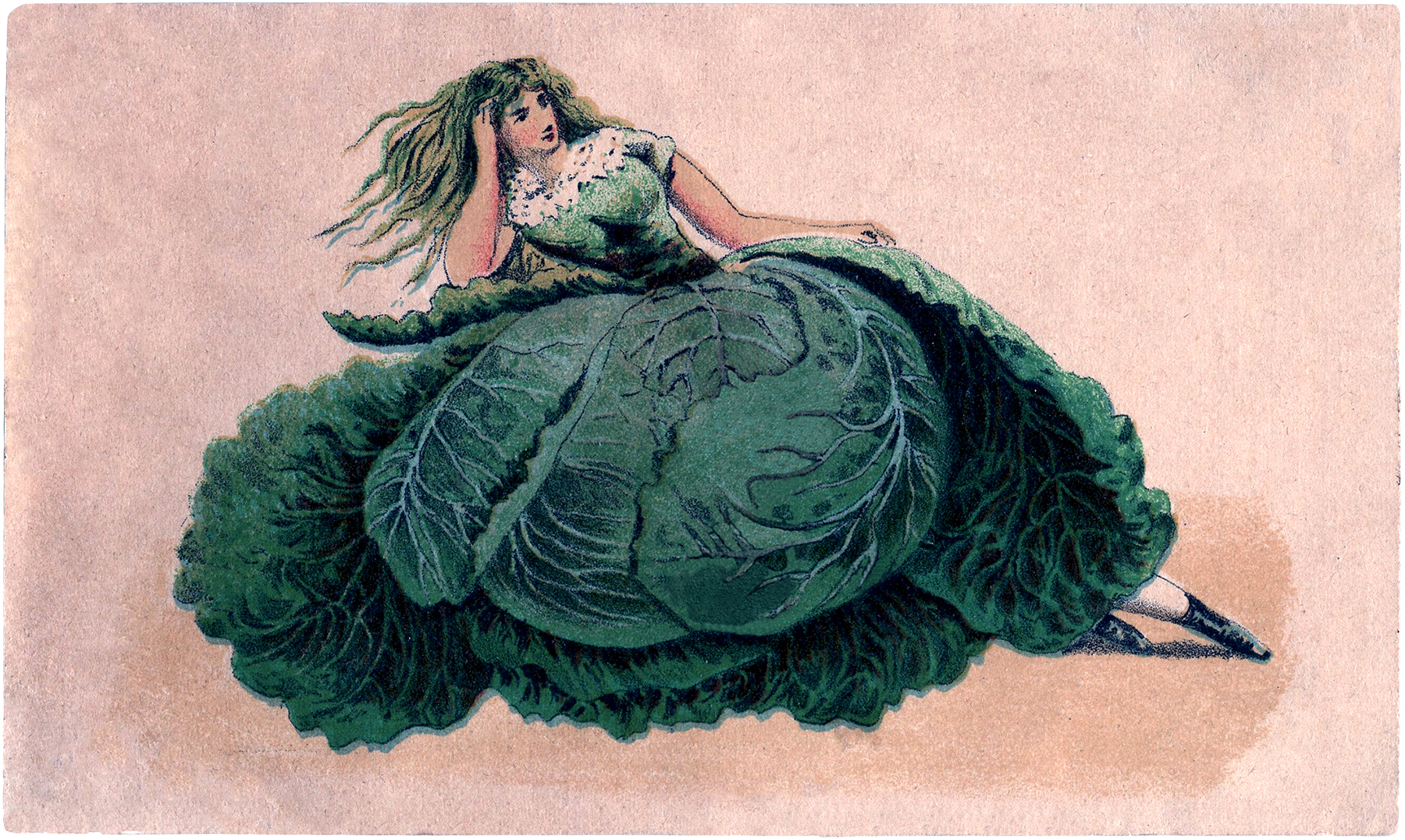 Vintage Cabbage Lady Image The Graphics Fairy