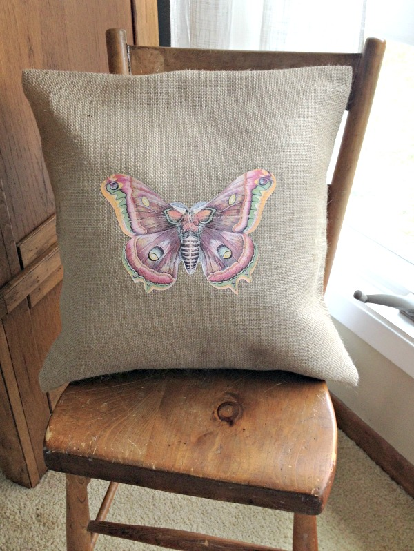 butterfly_pillow1