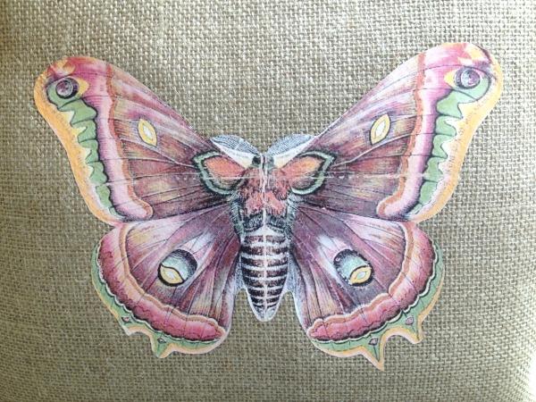 butterfly_pillow4