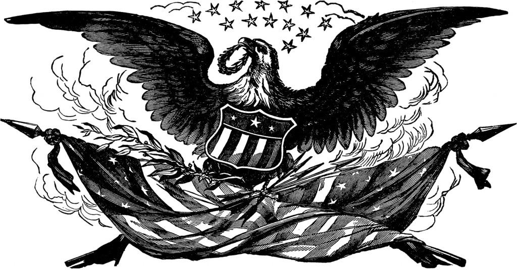 Vintage Bald Eagle Flag Image