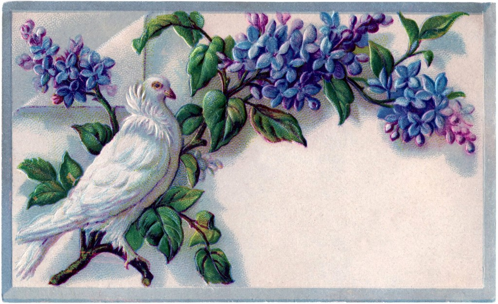 Incredible Free Vintage Lilacs Download The Graphics Fairy Funny Birthday Cards Online Ioscodamsfinfo