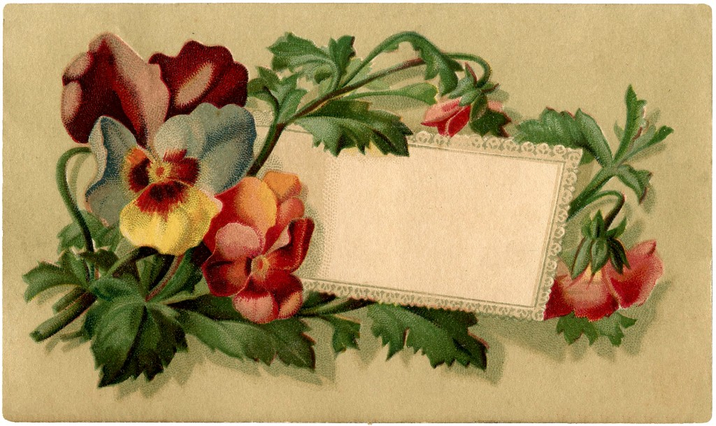 vintage pansy label