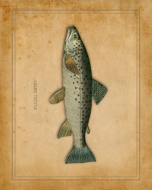 fishin-sm_lodge_print1_graphicsfairy
