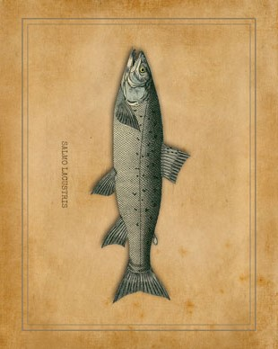 fishin-sm_lodge_print2_graphicsfairy