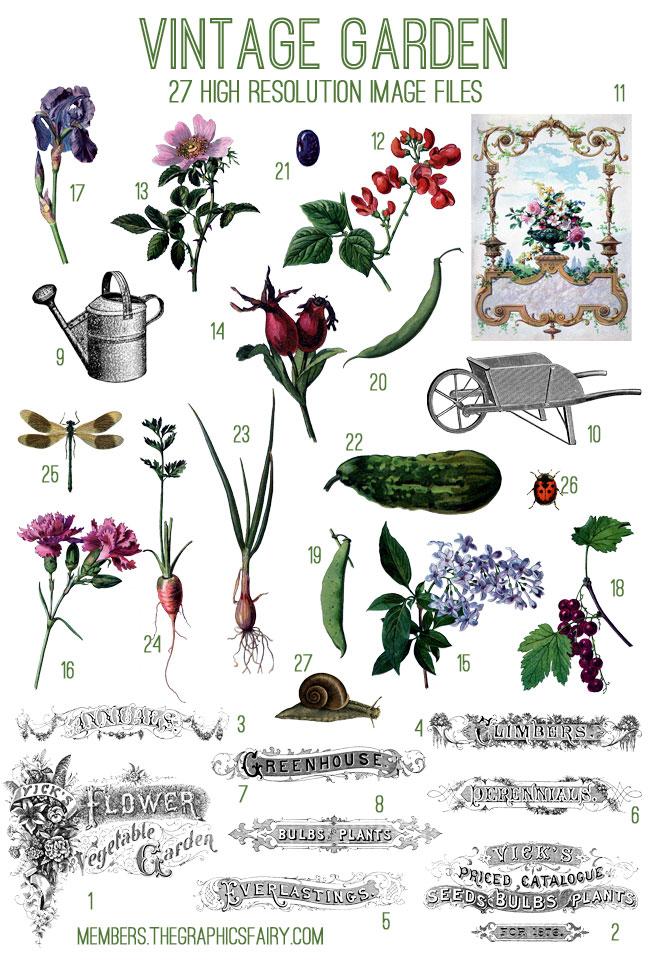Gorgeous Vintage Garden Kit Tgf Premium The Graphics