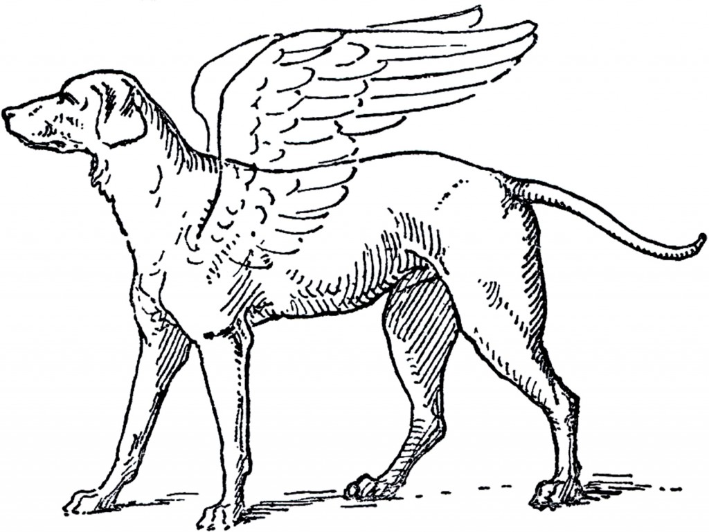 Free Angel Dog Clip Art