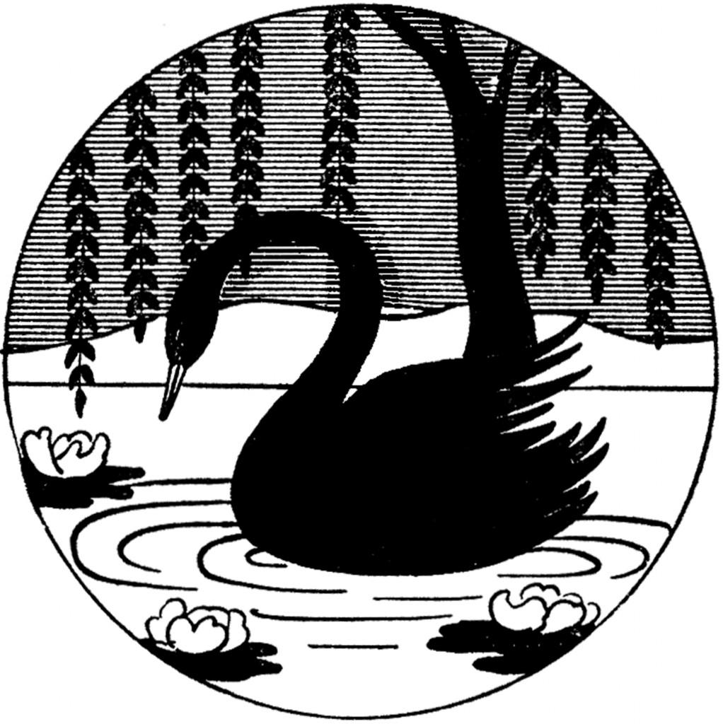 Vintage Black Swan Image