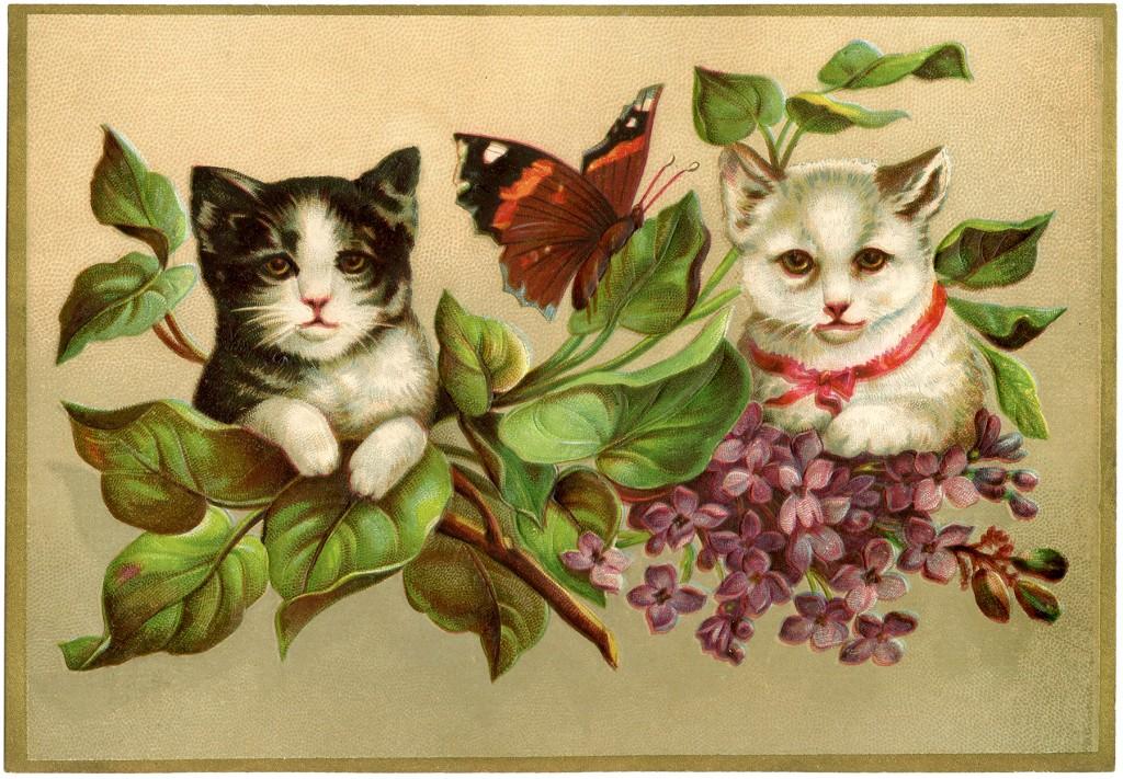 Vintage Kittens Image