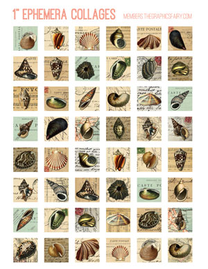 ephemera_shell_collage_inchies_graphsfairy