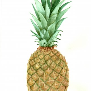 Free Pineapple Watercolor Printable!