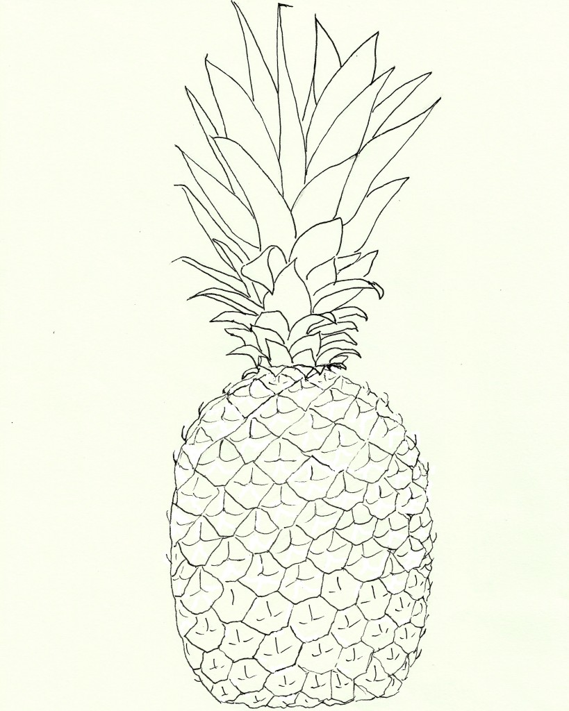 pineapple-line-art