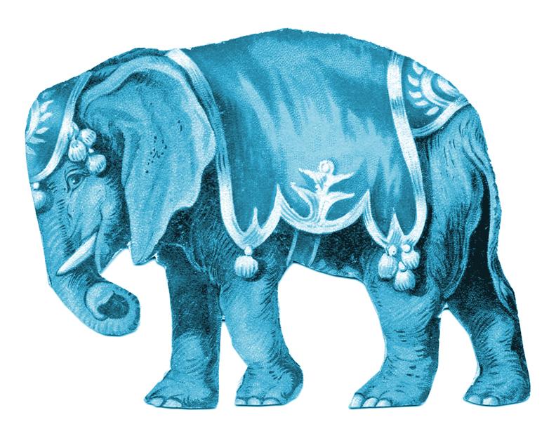 Circus Elephant Image HGTV