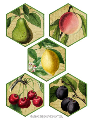 fruit-tags-distressed-graphicsfairy
