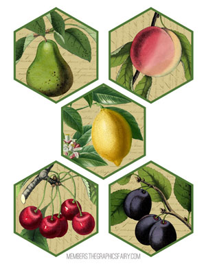 fruit-tags-graphicsfairy