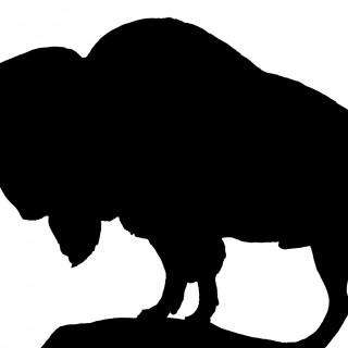 Vintage Buffalo Silhouette Image!