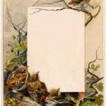 Vintage Robin Label