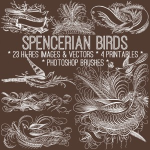 Vintage Spencerian Birds Kit