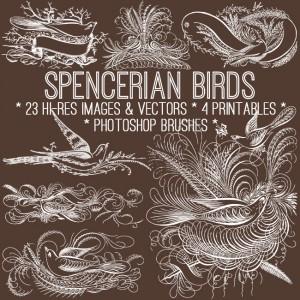 Vintage Spencerian Birds Kit