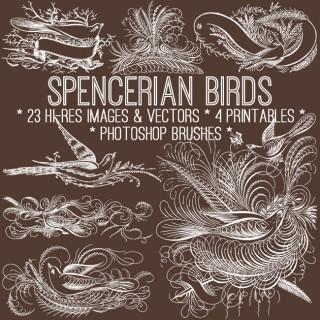 Vintage Spencerian Birds Kit! TGF Premium