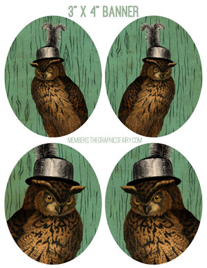 3x4_owls_ladies_graphicsfairy