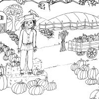 Fall-Coloring-Page-Pumpkin-Patch-thm-GraphicsFairy