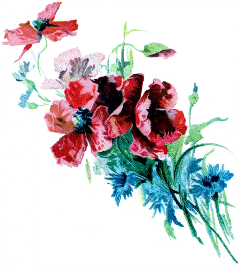 Romantic Poppies Bouquet Image