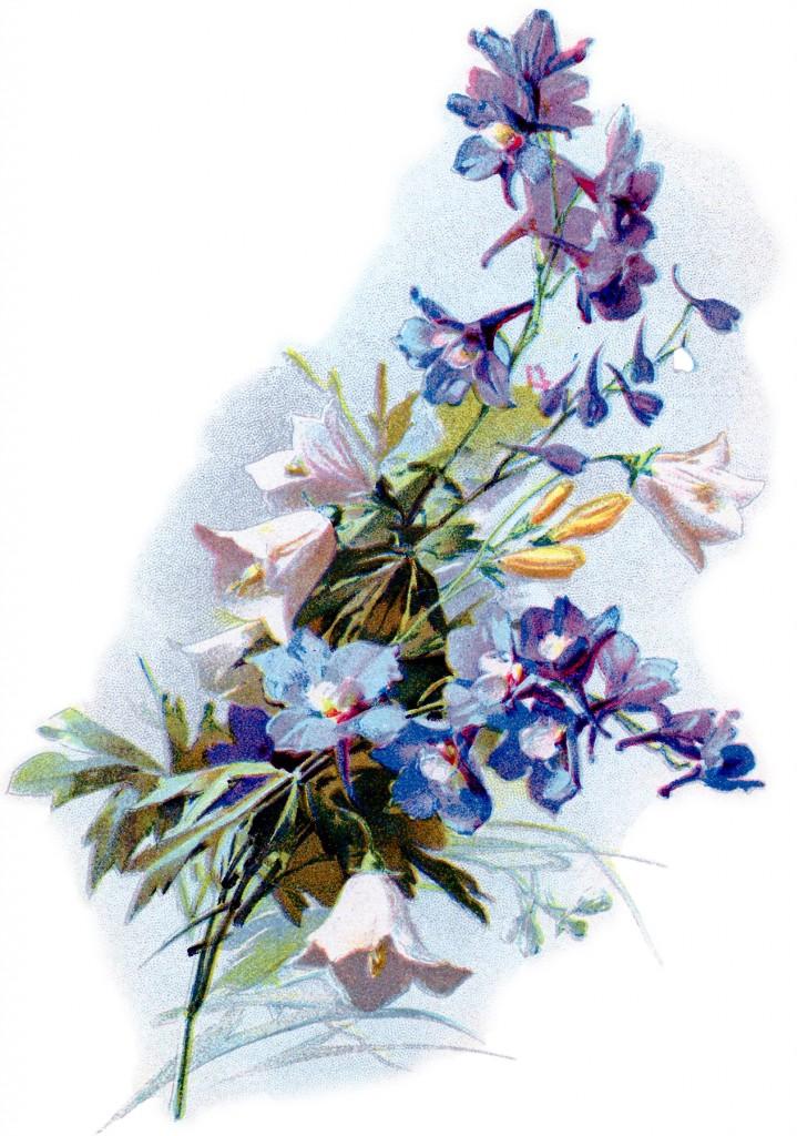 Soft Romantic Flowers Image