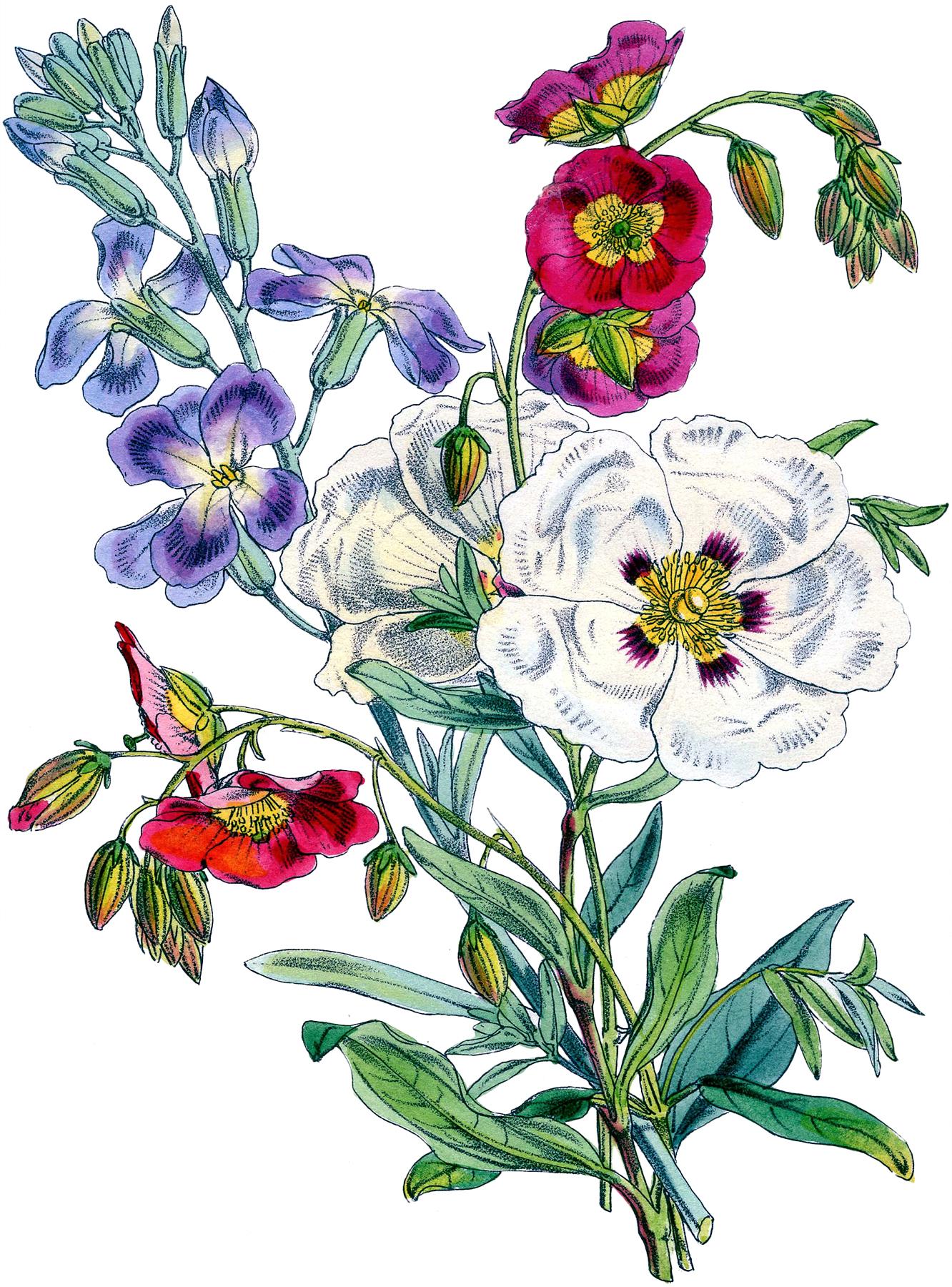 Gorgeous Vintage Floral Bouquet Image! - The Graphics Fairy