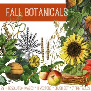 Fall Botanicals Image Kit