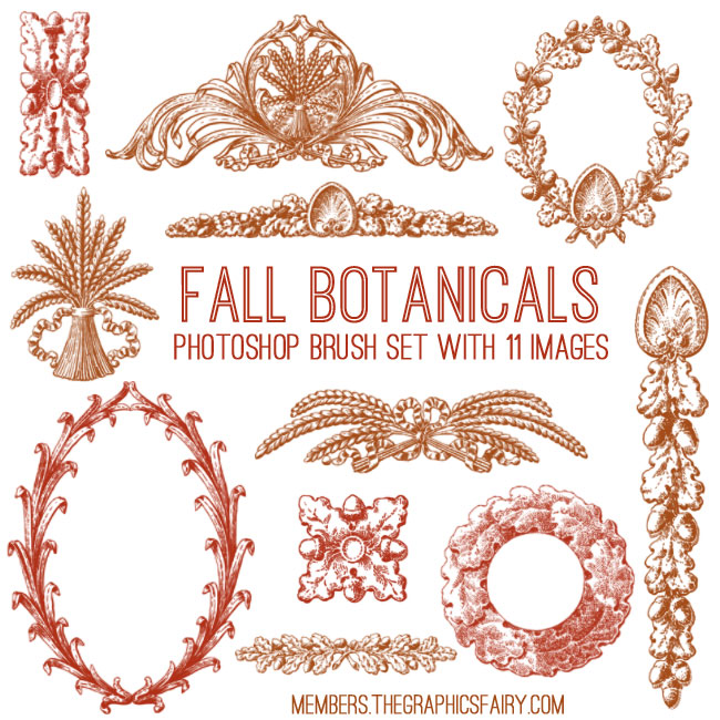 fall_botanicals_brushes_graphicsfairy