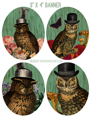 owl_collage_3x4_graphicsfairy