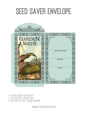 seed_envelope_corn_graphicsfairy