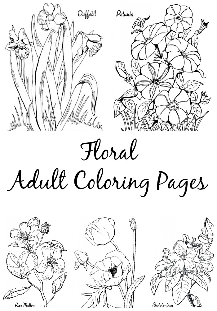 7 Floral Adult Themed Coloring Pages