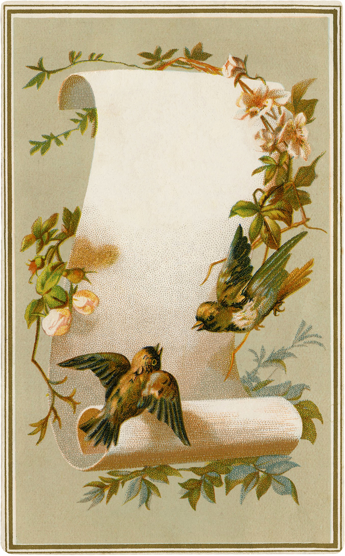 Vintage Birds Label Image
