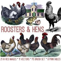 Roosters and Hens Image Kit