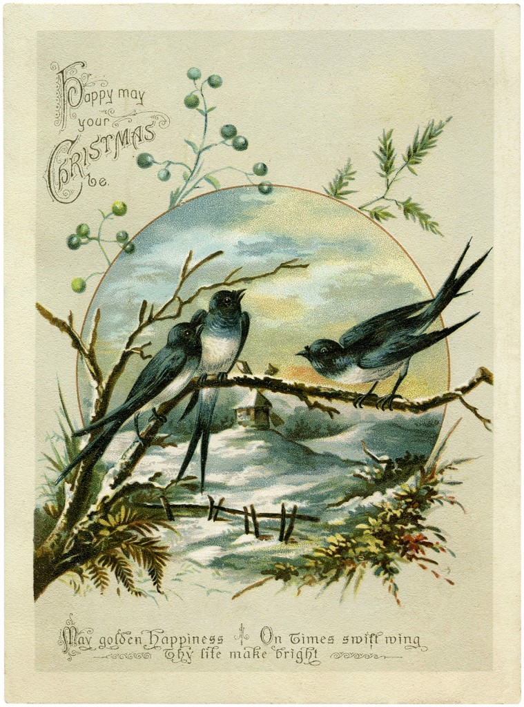 Antique Christmas Birds Image