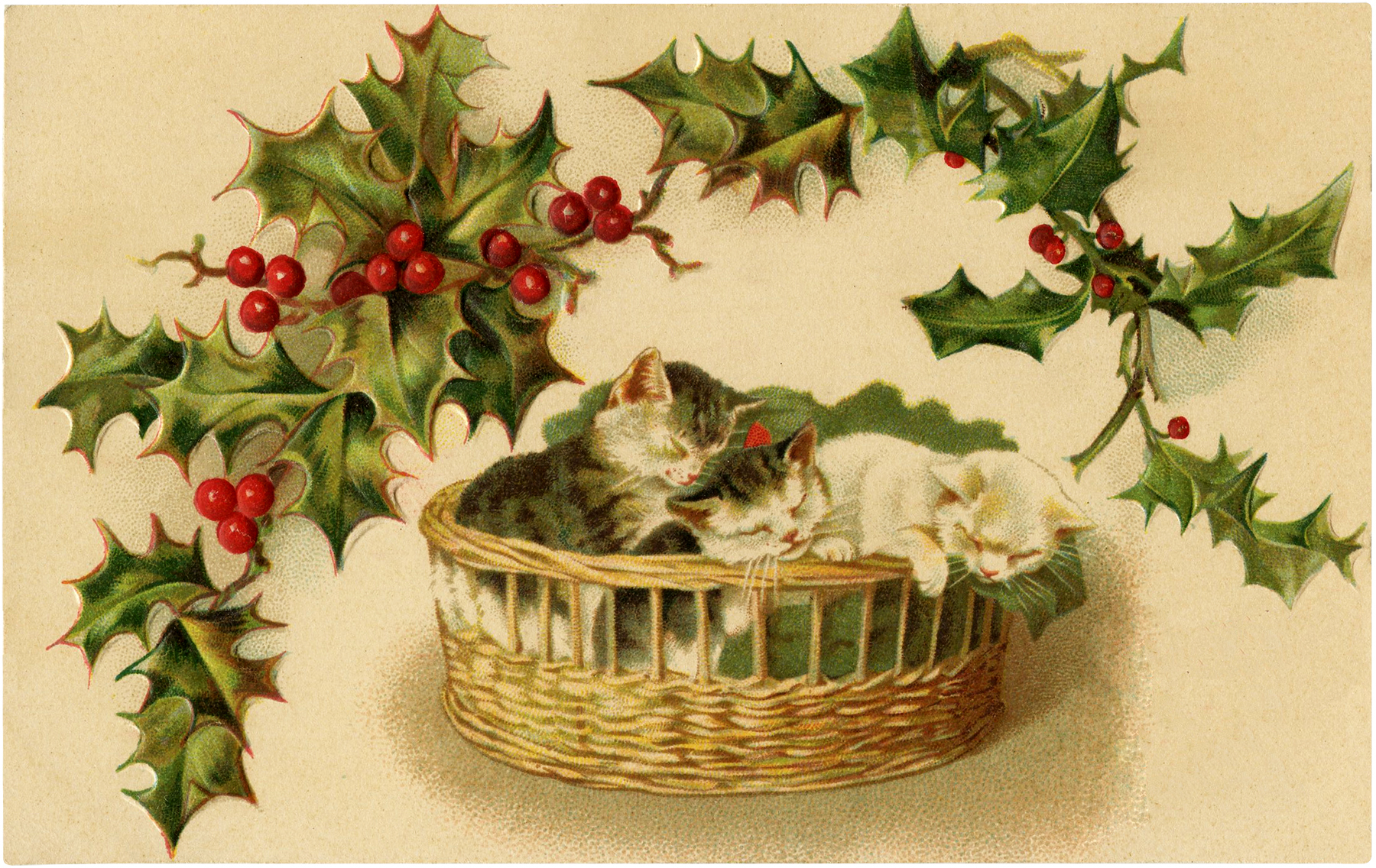 christmas kittens download! - the graphics fairy
